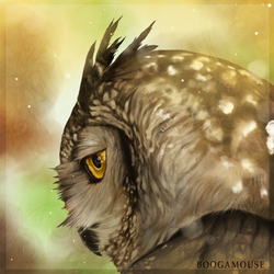 Eagle Owl by BoogaMouse