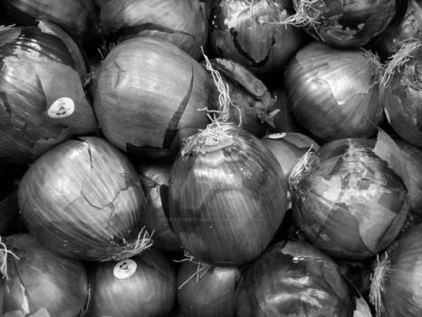 close up of onions by crazyartchick