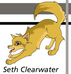 seth clearwater-pup by twilight-luv