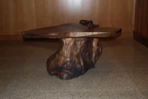 Organic coffee table by N8grafica