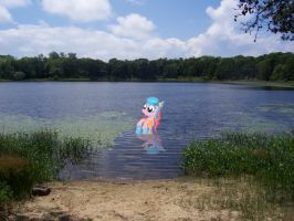 pinkie swimming by wolfgangthe3rd