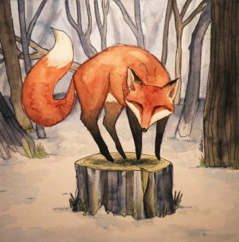 The Adventurous Fox by Tales-of-Torment