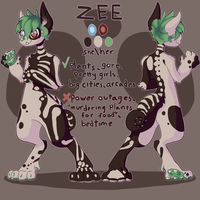 Zee by MirrorLands