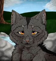 Graystripe: My new home [REDRAW] by KatzenKakaNav-YBlah