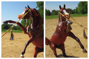 Breyer - Young Wild Thing by The-Toy-Chest
