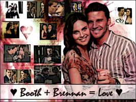 Booth and Brennan by I-Caught-Myself