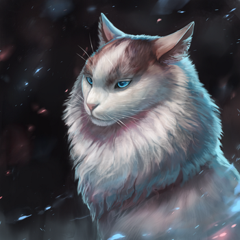 Blue-Eyed Cat by Noctualis