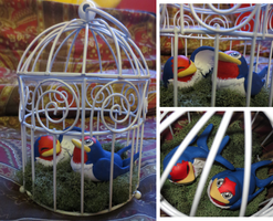 Caged Taillow