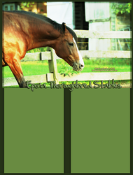 Epona Thoroughbred Stables by WhiteRozePetals