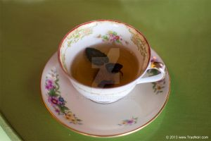 Floral cup with tea and leafs stock image 001 by NoirArt