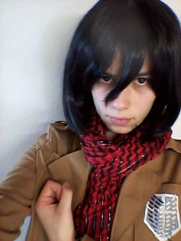 Mikasa (SnK) Cosplay WIP by LadyWolf009
