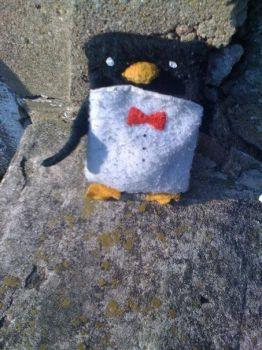 iPhone Penguin Case by shenanigancrafts