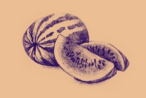 Drawing of watermelon. Illustration by oanaunciuleanu