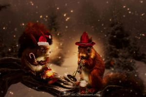 Christmas is Comming by HILIF