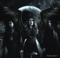 Nocturne Coven by AshlieNelson