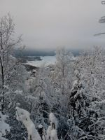 Ice and snow on trees and lakes, Oslo, Norway. by bernardojr