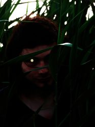 Tall Grass by Chiracy