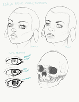 Elaisu racial facial features sketches by BlackHawk45LC