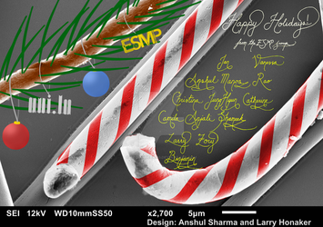 Scientific Christmas Card by requindesang