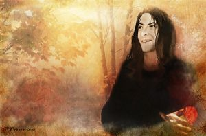 Snape . No Place at All by Anarda2