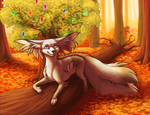 Autumn Sunrays by SpitfiresOnIce