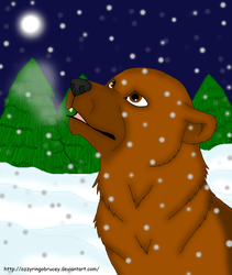 Bear in the snow! by OzzyRingoBrucey