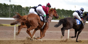 Horse Racing 1 by JullelinPhotography