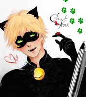 Chat Noir~ by aplbunny