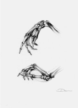 Hands study by Acalewia