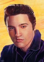 Elvis by Tom-Cii
