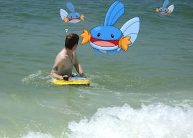 Mudkip Attack by Sharulia