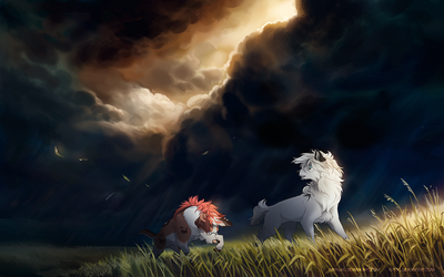 Collab: Calm before the storm by impalae
