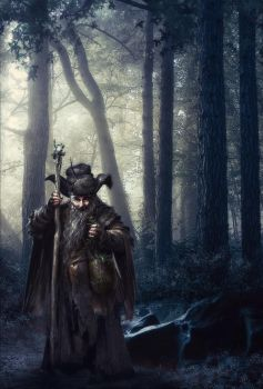 Radagast The Brown by YoungPhoenix3191