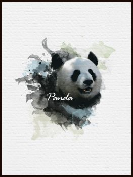 Panda by ZeroV25