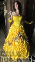 Beauty and the Beast - Belle's Ball Gown by AshenArtifice
