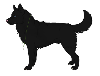 Wolf/Husky adopt (10 point) by NorthernMyth