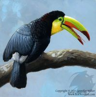 Toucan Sunbath - Keel-Billed Toucan by Nambroth