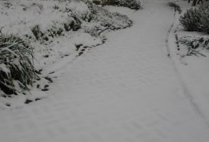 Snowy Path by MySoulBliss