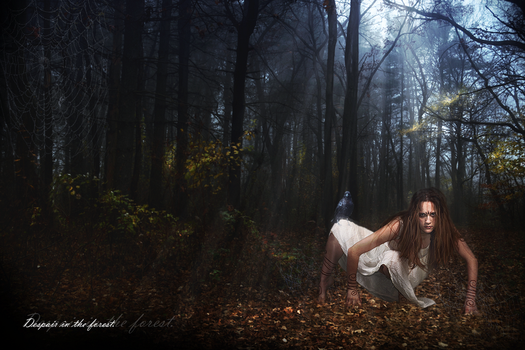 Despair in the forest by Sunchales