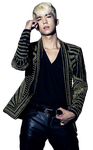 WooYoung Render 1 by AbouthRandyOrton