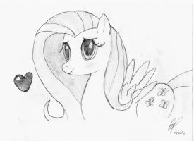 More Fluttershy by baratus93