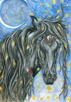 Graceful Lady of the Crescent Moon by DreamingofDarkhorses