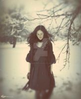 . . .. by Frozen-photo