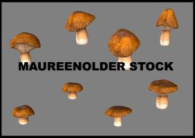 STOCK 3d plants mushrooms by MaureenOlder