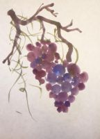Grapes by forty-two-point-five