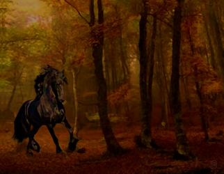 Horse in autumn twilight by PhilDiehl