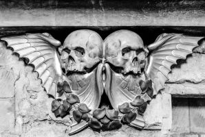 Skulls and Wings Stock Deepgrounduk DeviantArt by deepgrounduk