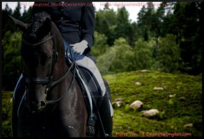 Black Dressage2 by MollyMay335