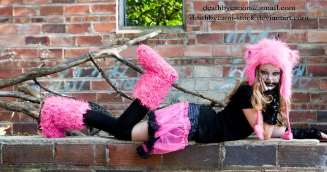 Cheshire Cat 10 by deathbycanon-stock