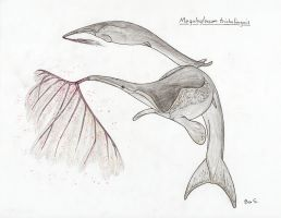 Pelagic Xenarthra Challenge 2 ~ The Licker by Pterosaur-Freak